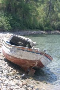 Phalaeis boat